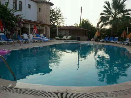 Camelia Apartments : pool