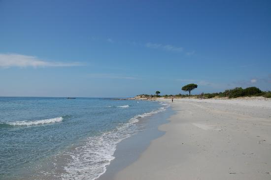 Albergo Diffuso Mannois : strand im naturpark bidderosa