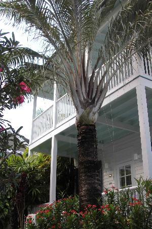 Marquesa Hotel: Jnr. suite 18