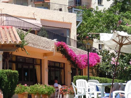 Hi! Gardenia Park Hotel: Plants around the hotel were in full bllom