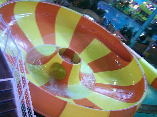 KeyLime Cove Indoor Waterpark Resort: ONE OF THE MANY COOL WATER SLIDES