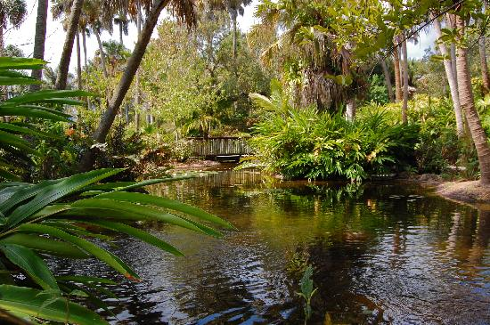 Three Picture Of Mckee Botanical Garden Vero Beach