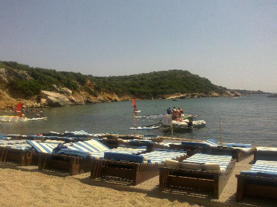 Seferihisar, Turkije: Busy windsurfing day at beach