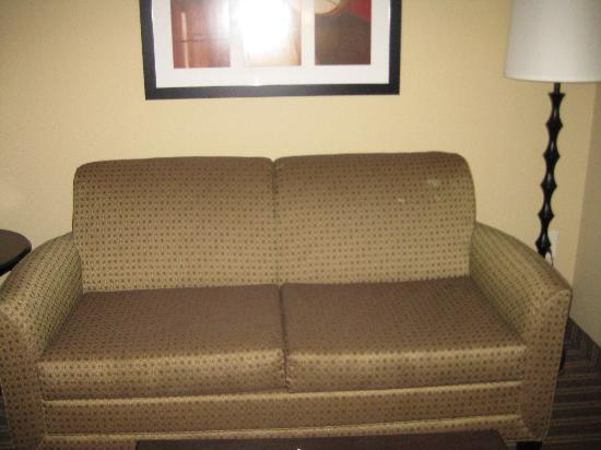 Comfort Suites West of the Ashley: Stained sofa