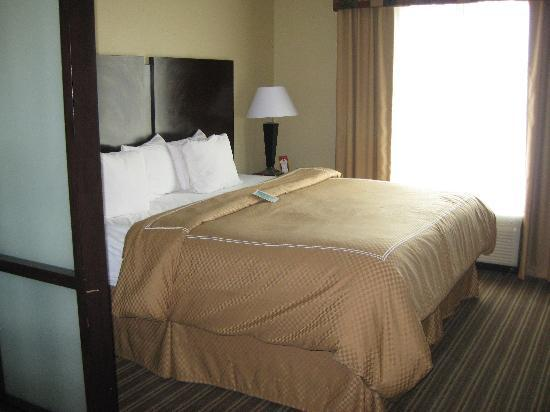 Comfort Suites West of the Ashley: Main Bed Room