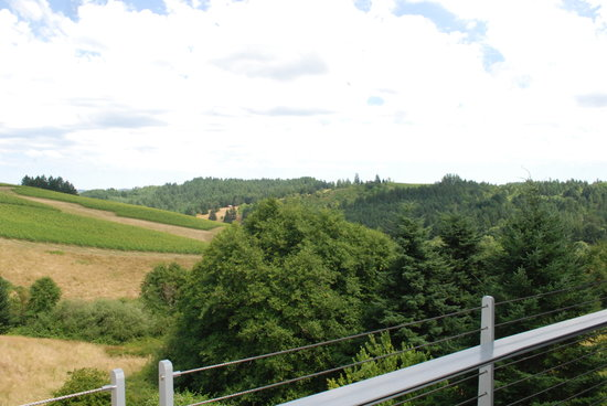 WillaKenzie Estate: view