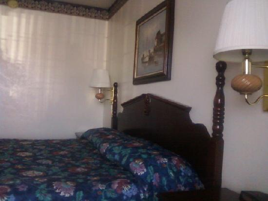 Discovery Inn Ukiah, CA: Bed side