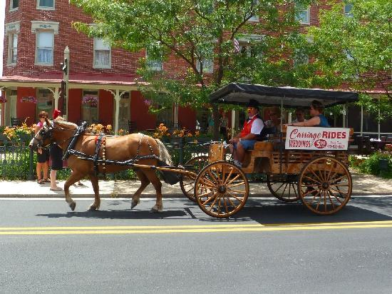 Horse & carriage rides in downtown Berlin