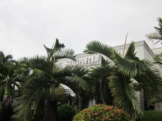 The Sugarland Hotel: Hotel sign blocked by leaves