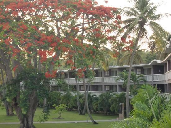 Club Med La Caravelle: jardins de l'hôtel