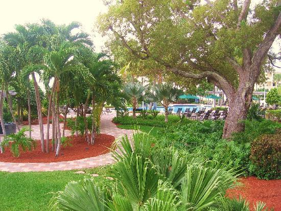 Hyatt Windward Pointe: Incredible grounds