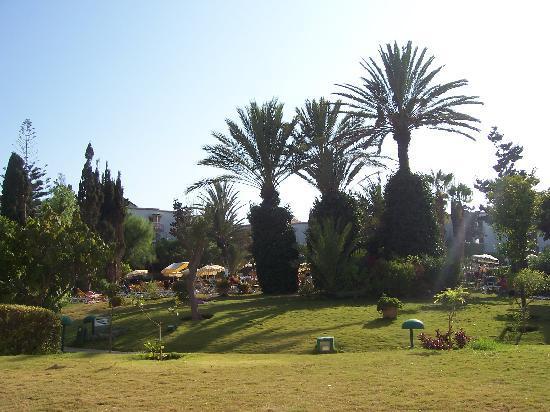 Hotel Agadir Beach Club: Le parc devant la piscine