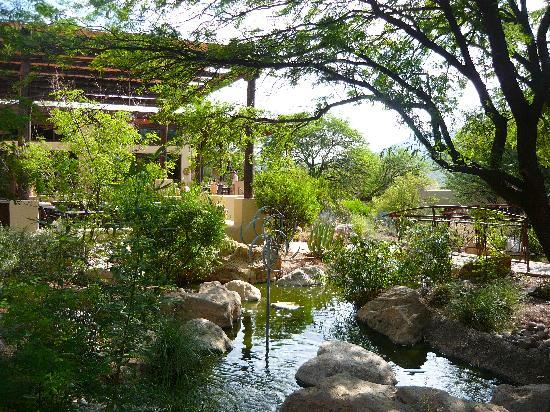 Miraval Arizona Resort & Spa: Near the dining room