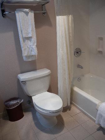 Best Western Plus Suites Hotel: il bagno