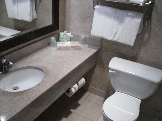 BEST WESTERN PLUS Abercorn Inn: Small bathroom