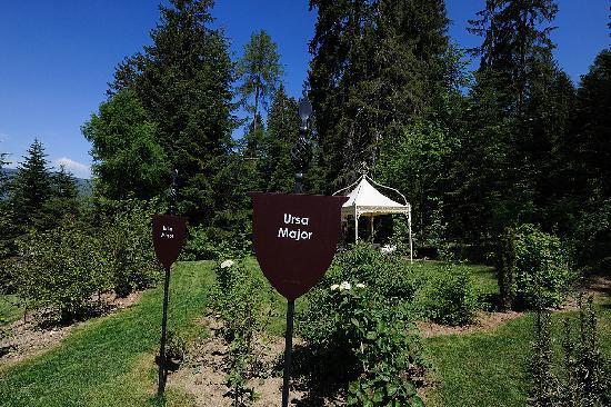 Villa Orso Grigio: Giardino privato