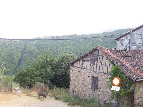 Hotel Spa Villa de Mogarraz: vista desde la ventana