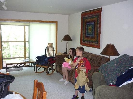 Grand Targhee Vacation Rentals: Living room