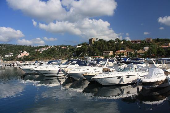 Marina di Casal Velino - Porto