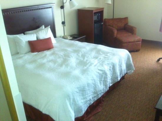 Hampton Inn University Place: full size king bed
