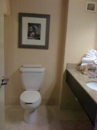 Hollywood Casino Tunica Hotel: Bathroom standard room