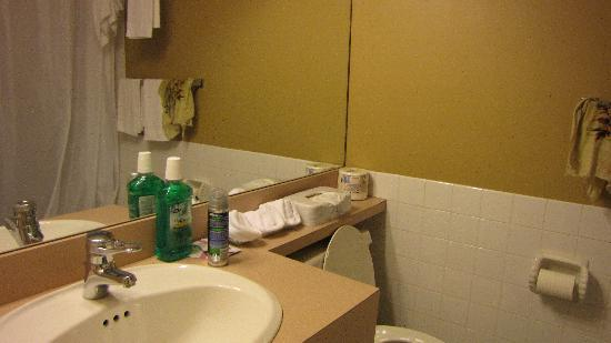 Econo Lodge Canmore: Bathroom