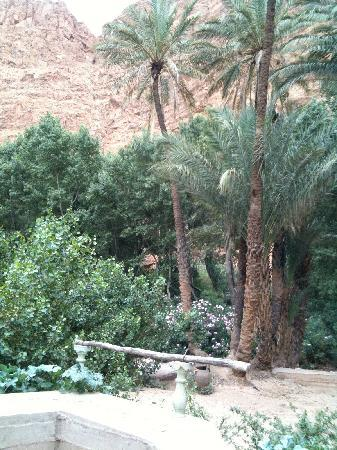 Hotel Anissa: oasis in back