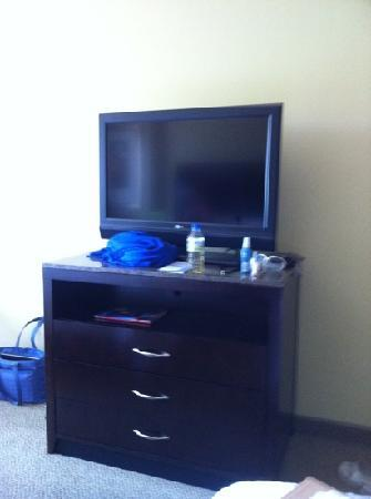 Hilton Garden Inn Minneapolis Downtown: tv