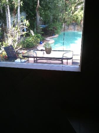 Ed Lugo Resort: better view of the pool from the shower..