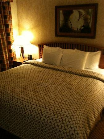 Embassy Suites by Hilton Anaheim - South: King Bed