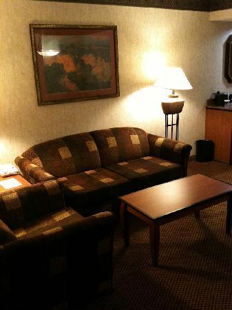 Embassy Suites by Hilton Anaheim - South: Living Room (sleeper sofa)