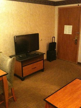 Embassy Suites by Hilton Anaheim - South: New HD LCD TV