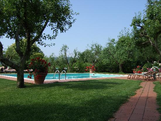 Casolare di Libbiano: The view towards the pool