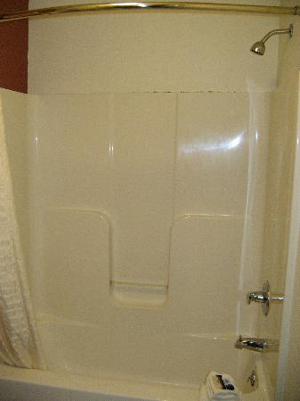 Red Roof Inn : Moldy shower stall (look at the top of the enclosure)