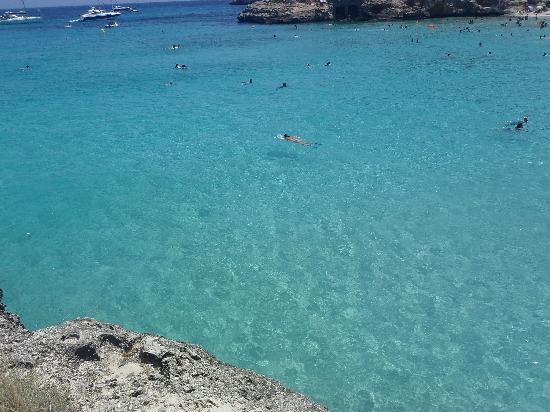 Playa de S'Amarador: Crystal clear water at S'Amarador