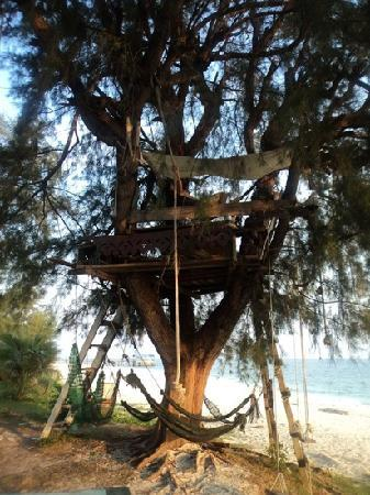 Pulau Besar, Malasia: the treehouse, perfect for relaxing