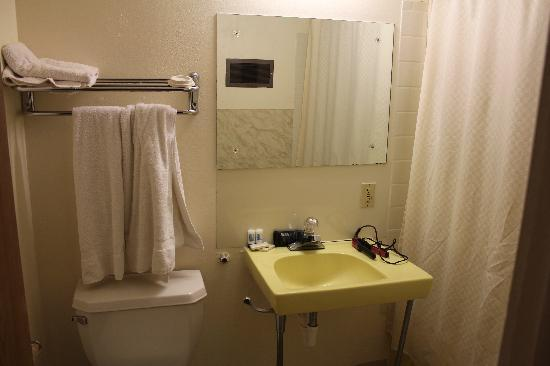 Lazy R Motel: Ipersonally like the 60's yellow sink and tub