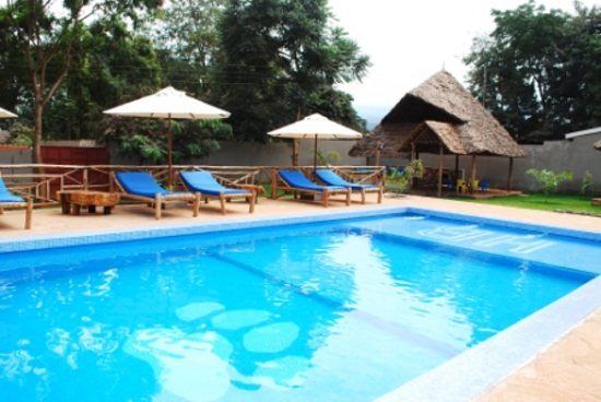 Honey badger lodge moshi tanzania updated 2017 reviews tripadvisor for Swimming pools in dar es salaam