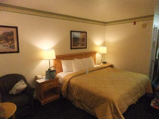 Comfort Inn & Suites Sequoia Kings Canyon: Doppelzimmer