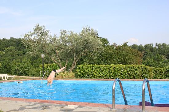 Agriturismo Il Poggio alle Ville: Oh, the lovely pool!
