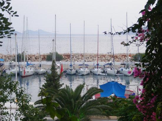 Akin Restaurant: view from restaurant