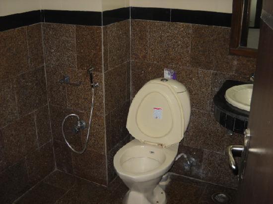 Vivek Hotel: Salle de bain neuve par contre sans eau chaude et papier toilette
