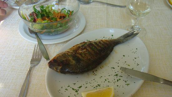 كافاليري بالاس: Frischer Fisch