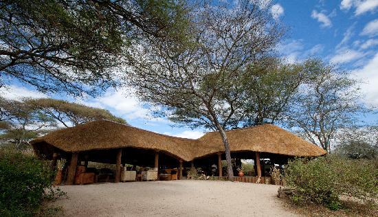 橄欖營地飯店