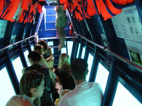 Oceanarium Explorer: Below Deck