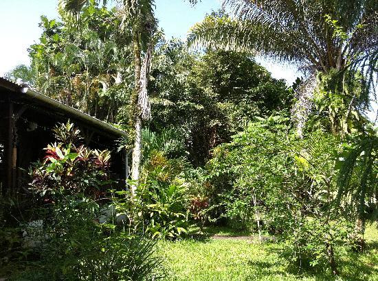 Gites de l'Habituee: le jardin