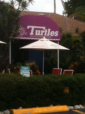 Turtle's: Turtles