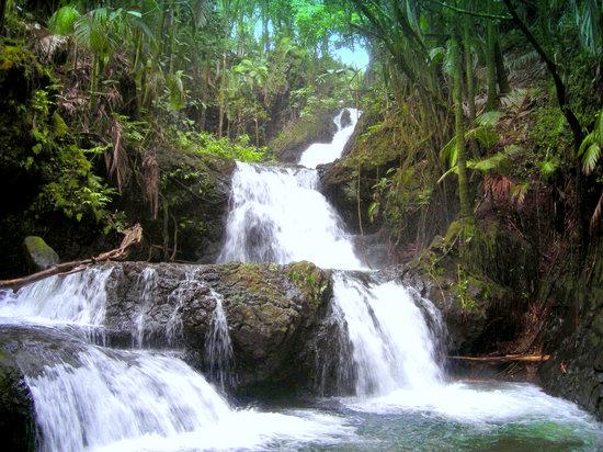 Hawaii Tropical Botanical Garden: Triple Falls