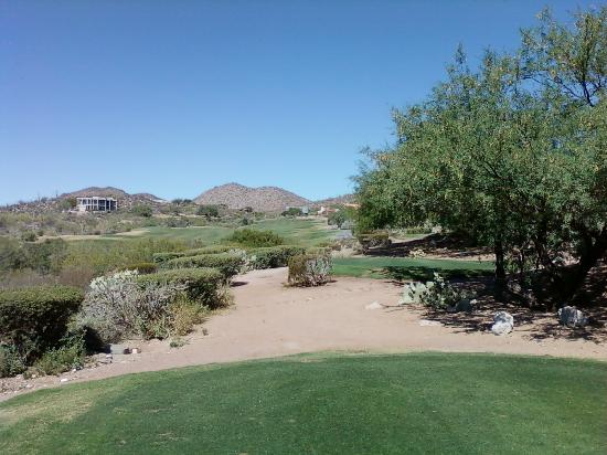 Starr Pass Golf Suites: Focus on the green