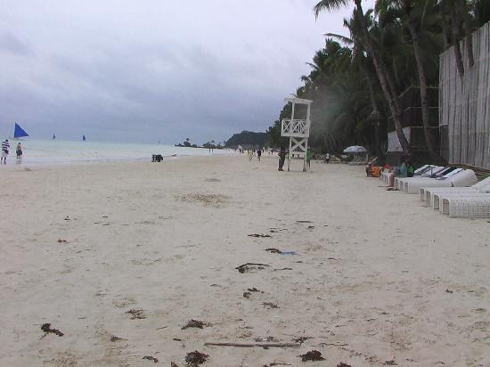 Spider House Resort : White Sand Beach, 5 min walk